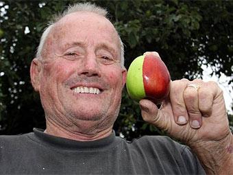 Это яблоко прославило британского садовода на весь мир